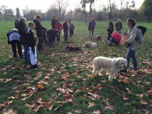 cours collectif d'éducation canine à Vincennes