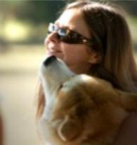 Promenade de chiens à Vincennes